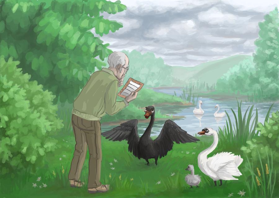 Суждение «все лебеди белы» достоверно только до тех пор, пока мы не обнаружим чёрного лебедя.