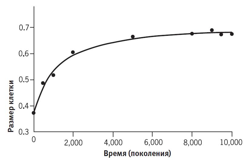 Эксперимент Ленски