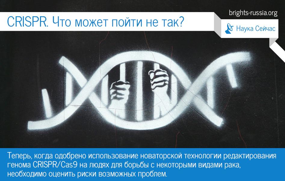 CRISPR. Что может пойти не так? | Движение Брайтс