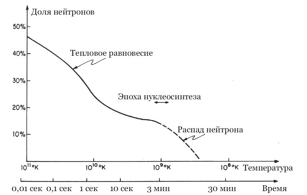 Как менялось соотношение между нейтронами и протонами.