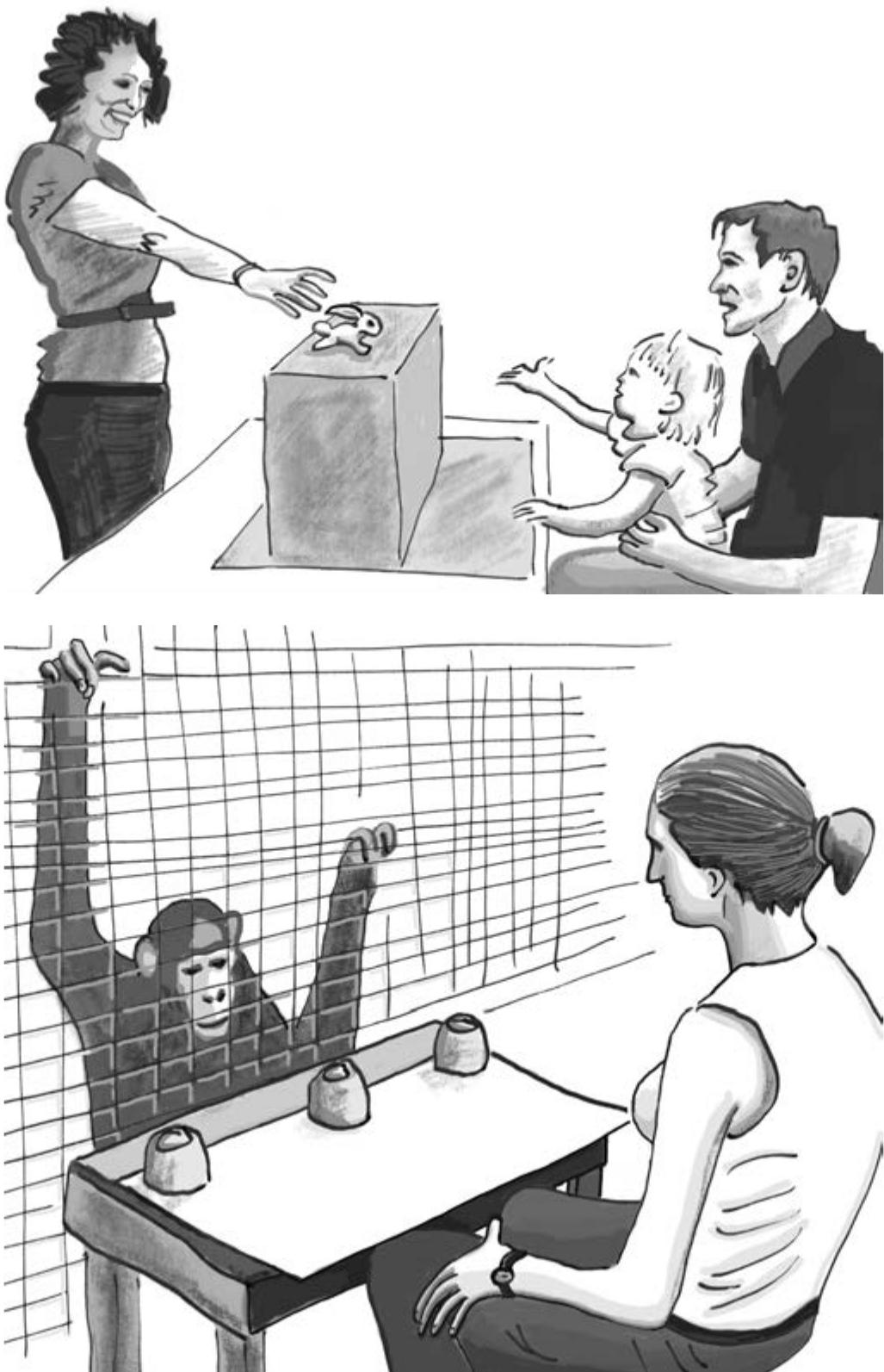 Познавательные способности детей и человекообразных обезьян сравниваются, на первый взгляд, в одинаковых условиях. Однако детей не держат за решеткой, с ними разговаривают, и часто они сидят на коленях у своих родителей. Все это позволяет детям наладить отношения с экспериментатором и получать неумышленные подсказки от родителей. Важнейшее отличие в отношении человекообразных обезьян состоит в том, что они сталкиваются с представителем другого вида. Учитывая, насколько сравнение детей и человекообразных обезьян ставит последних в невыгодное положение, его нельзя считать убедительным.
