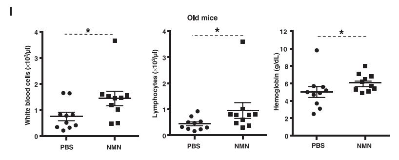 Группа учёных из Австралии и США под руководством Дэвида Синклера опубликовала статью, в которой была открыта роль NAD+ в регуляции связывания двух белков, DBC1 и PARP1 у мышей. Было известно, что PARP1 играет важную роль в репарации ДНК. Учёные обнаружили (в эксперименте на шести мышах — по три в группе), что NAD+ с возрастом становится меньше, поэтому предположили, что увеличение уровня NAD+ в клетке приведёт к «омоложению».