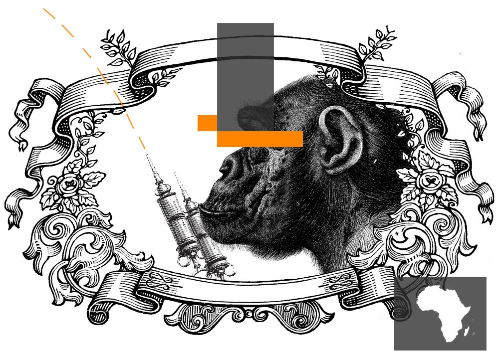 На основе предположений, допущений и прямых домыслов утверждалось, что «в 1957–1960 гг. в полевых испытаниях (Центральная Африка) применялась живая оральная полиомиелитная вакцина, приготовленная с использованием культур почечной ткани шимпанзе, инфицированных обезьяним вирусом иммунодефицита.